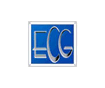ECG Consulting