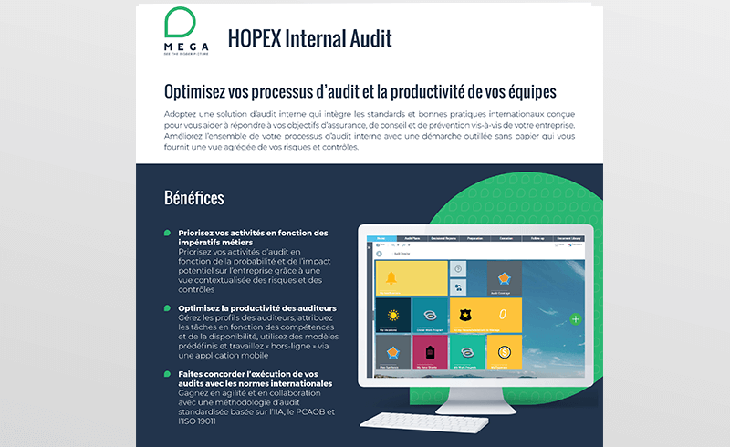 HOPEX Internal Audit
